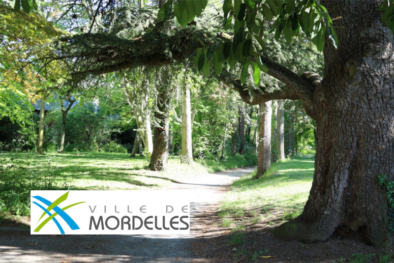 Mordelles (35)